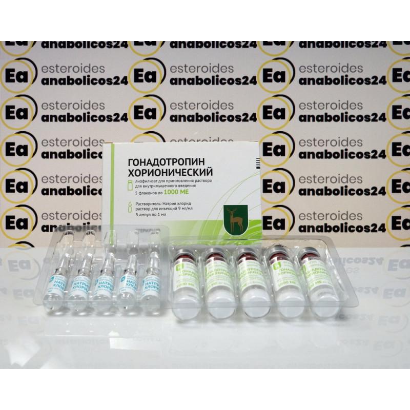 Gonadotropina corionica FGYP Pianta endocrina di Mosca | EA24-0288