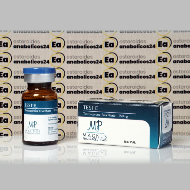 Test E ( Testosterone Enanthate) 250 mg Magnus Pharmaceuticals | EA24-0261