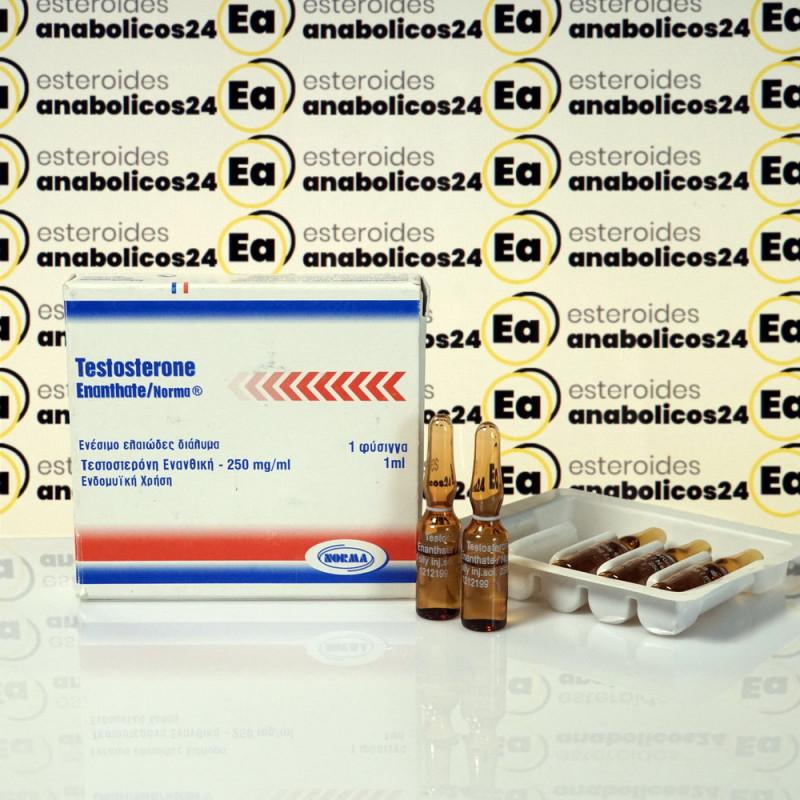 Testosterone Enanthate 250 mg Norma Hellas | EA24-0272